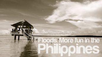 olango-wetlands-cebu-more-fun-on-the-philippines